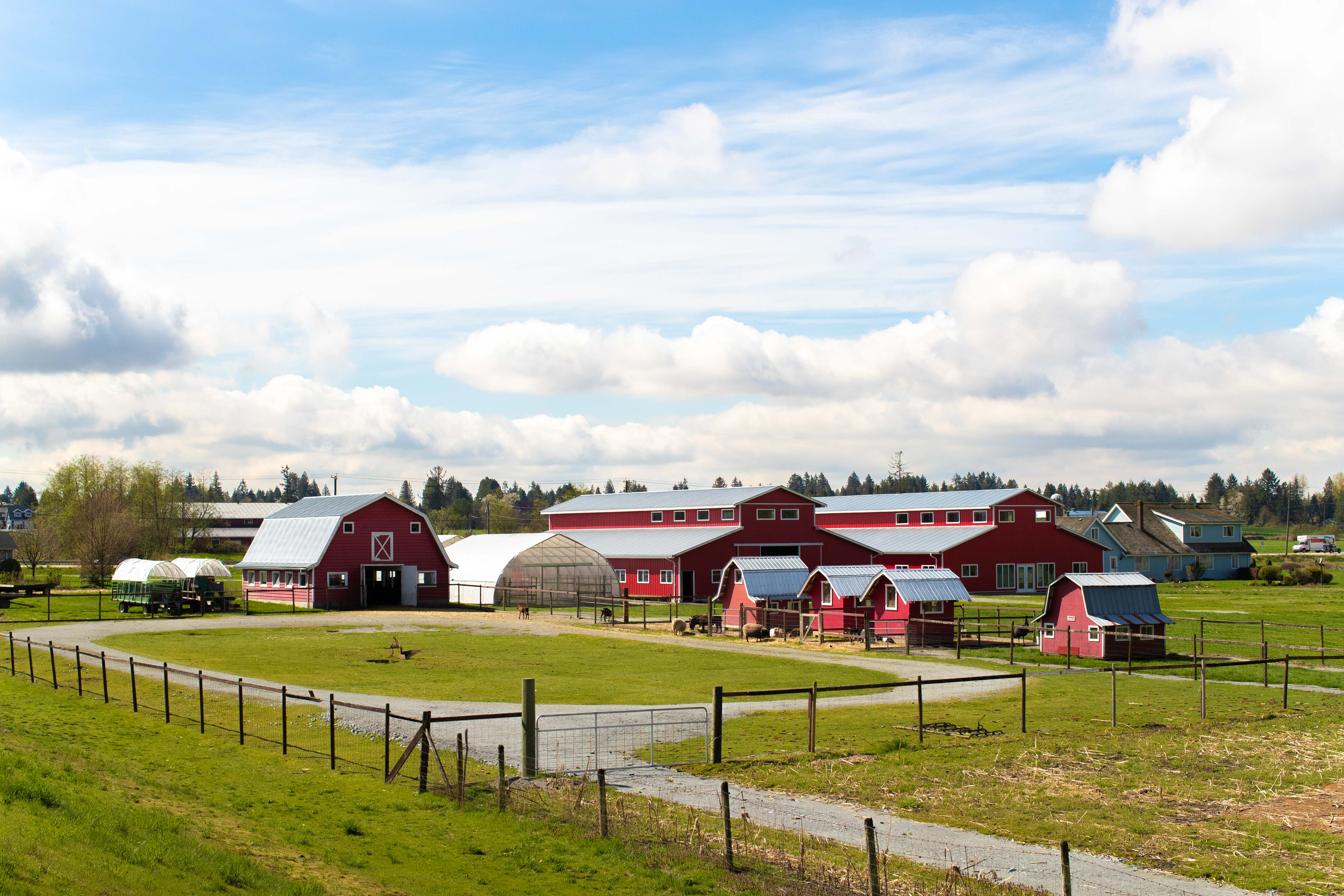 https://highpointeliving.ca/wp-content/uploads/2019/08/One-of-many-local-farms-A45I1897.jpg